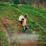 Agriculteur diffusant des pesticides
